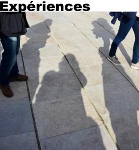 Expérience enseignement